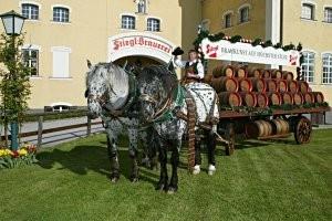 salzburg brauwelt