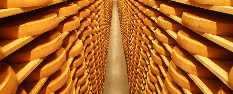 австрия дорога сыра брегенцвальд