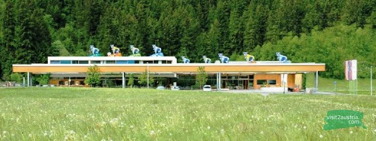 Сыроварня в Циллертале